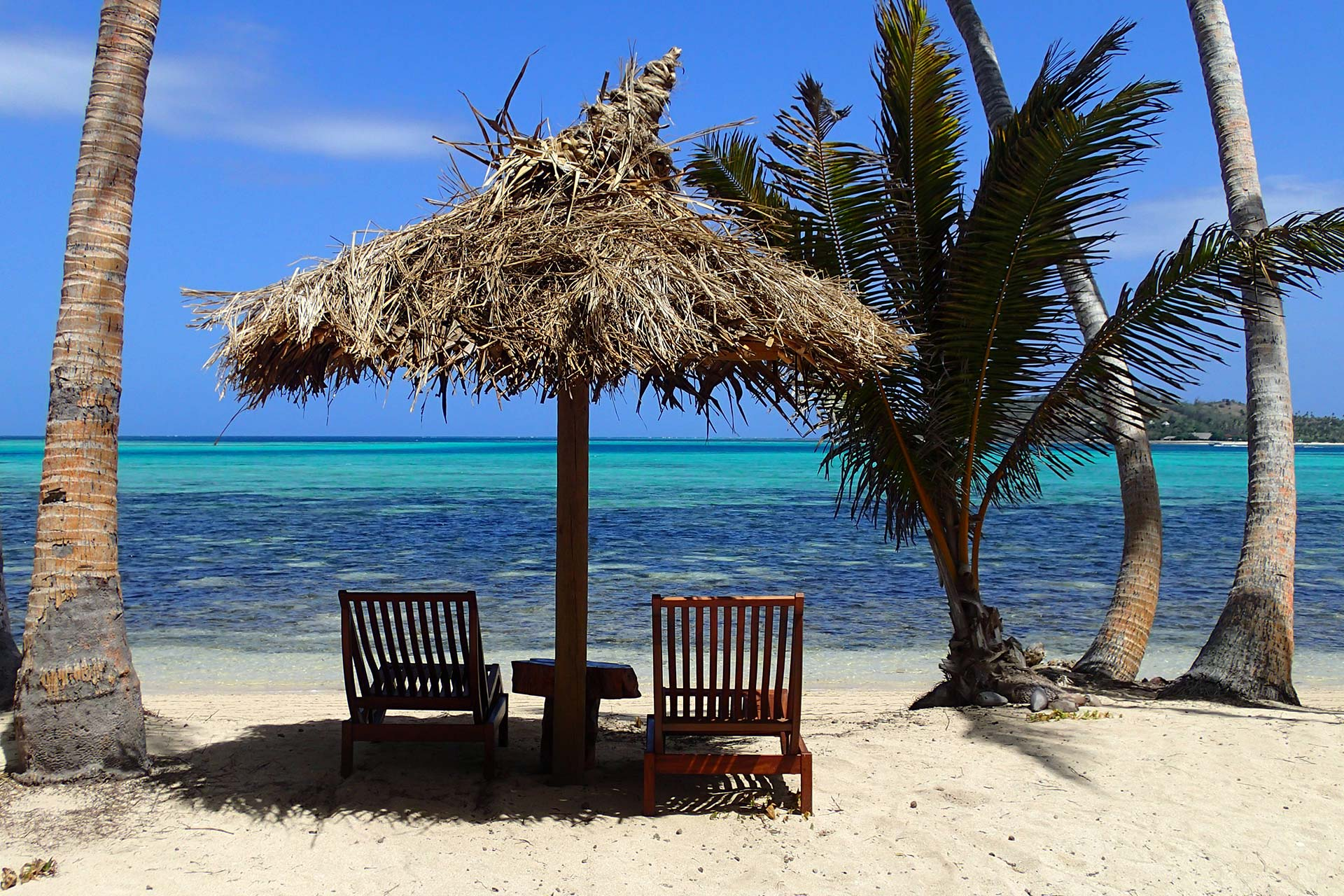 Fiji-Travel-Network-Coconut-Beach-Resort-3