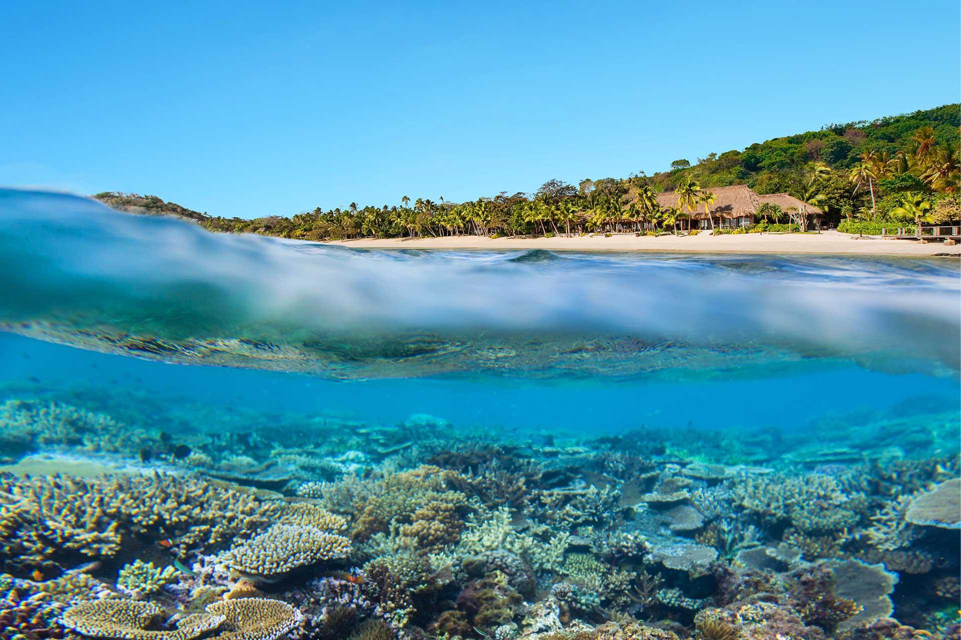 Fiji-Travel-Network-Kokomo