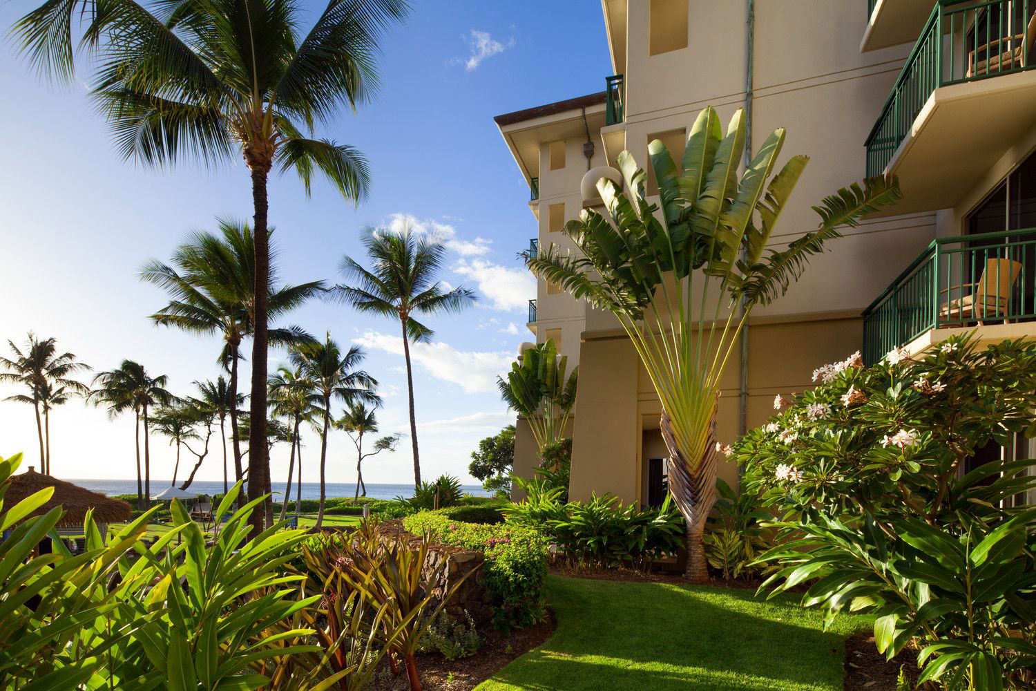 FTN-The-Westin-Kaanapali-10