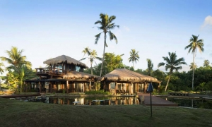 Island-Travel-Network-Coconuts-15