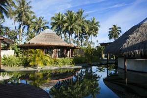 Island-Travel-Network-Coconuts-19