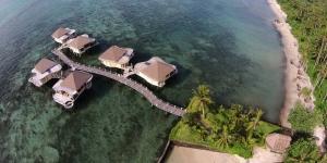 Island-Travel-Network-Coconuts-22